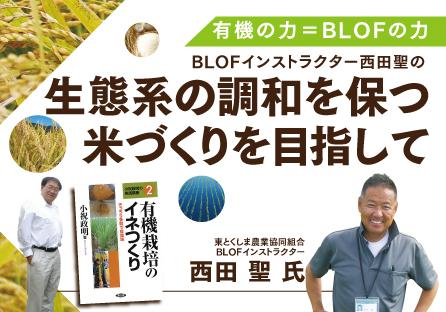 BLOF(生態系調和型農業理論)勉強会チラシ製作